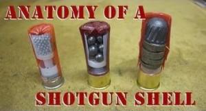 Anatomy_of_a_Shotgun_Shell_96753970_thumbnail
